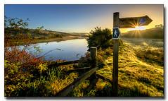 Path-Beside-The-River-Avon (jeremy willcocks) Tags: riveravon path watersunrise morning light shadows sign fence sunny landscape devon uk sunstar jeremywillcocks wwwsouthwestscenesmeuk fujixpro2 xf1024mm south hams