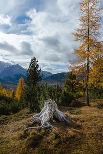 Memories in the Dolomites