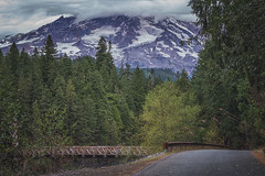 Byways (writing with light 2422 (Not Pro)) Tags: byways mountrainiernationalpark mountrainier bridge darkmattefinish road trees pine firtrees washingtonstate richborder sonya77 clouds fallcolors