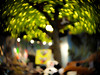 Bokeh Leaves (Greg Jarman) Tags: frankenmuth michigan c mount lens adapted micro four thirds olympus ep2