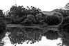 3 Timbó (faneitzke) Tags: portfolio canont5eos1200d canon canont5 brasil brazil brasile brésil bresilien santacatarina outubro october octobre latinoamérica latinamerica américadosul americadelsur américadelsur sudamerica ameriquelatine timbó valeeuropeu pretoebranco blackwhite blackandwhite noiretblanc blancoynegro monocromático monochromatic monochromephotography monochromaticphotography river rio fleuve río água water eau