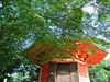 気になるのは、緑色、それとも、赤色。まずは、みつめて。 (aozora.umikaze) Tags: japan kyoto midoriiro akairo mitsumete nikon s3000 aozoranoiro