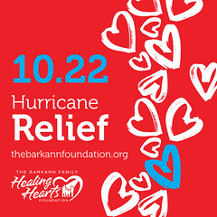 Hurricane Relief Image