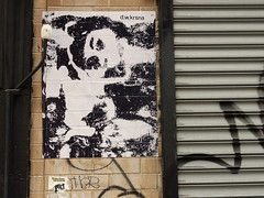 d.w.krsna (aestheticsofcrisis) Tags: street art urban intervention streetart urbanart guerillaart graffiti postgraffiti new york ny nyc manhattan soho lowereastside dwkrsna wheatpaste pasteup