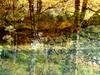 Ardinning_Autumn_sub_0001 (troutcolor) Tags: imagemagick subtract autumn ardinning