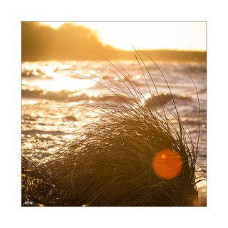 sundown autumn beach
