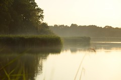 summer moods (JoannaRB2009) Tags: summer mood nature landscape view smoke water reflections sunset goldenhour plants evening pond ponds stawymilickie miliczponds lowersilesia dolnyśląsk dolinabaryczy riverbaryczvalley polska poland