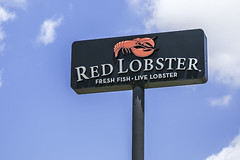 Red Lobster Logo (Mabry Campbell) Tags: sanantonio texas usa brand businesssign edlobster image logo photo photograph sign f35 mabrycampbell august 2017 august52017 20170805campbellh6a6627 100mm ¹⁄₂₀₀₀sec 100 ef100mmf28lmacroisusm