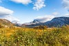 Autumncolors in Nordland Norway (Einar Schioth) Tags: autumn autumncolors day sky sun sunshine canon clouds cloud sigma sigma2470 vividstriking nationalgeographic ngc norway norge nature nordland helgeland helgelandskysten mountains mountain landscape photo picture outdoor einarschioth