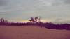(Mari Mailleux) Tags: pec princeedwardcounty canada ontario dreamy dream dunes sandbanks sand