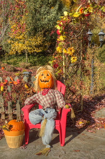 valley pumpkin man