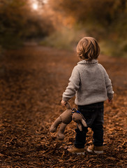Teddy's Autumn Tour (James W Atkins) Tags: toddler childhood childhoodmemories son teddy teddybear autumn autumnal autumncolours darenth darenthcountrypark