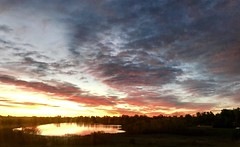 297/365/6 (f l a m i n g o) Tags: monday 2017 16th october lakewood morning sky sunrise 365days project365