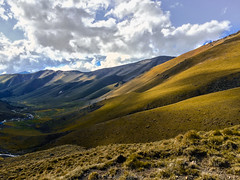 It was a nice weekend in WEst Elbrus (Leona Gorden) Tags: landscape outdoor foothill hike leonagorden travel nature beauty high leisure slopes mountain tranquil photography adventure kchr alania russia climbing tree highlands woods day sky light peak mountainside outside cloud horizontal colorful stones panorama hill grass riverbed hurzuk westelbrus elbrusdistrict
