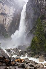Yosemite National Park (gjack56) Tags: iptcsubjects ressourcesnaturelles usa parcsnaturels environnement iptcnewscodes 06000000 06006000 06006002 environmentalissue naturalresources parks yosemitevalley california étatsunis us