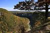 Genesee River Overlook (ramislevy) Tags: newyork autumn fall letchworthstatepark geneseeriver gorge landscape oak