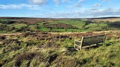 Commondale Moor (Paul Thackray) Tags: yorkshire northyorkshiremoorsnationalpark commondalemoor seat 2017