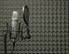 Microphone in Acoustic Booth (peprecording) Tags: condenser microphone inside acoustic booth panels acoustical broadcasting broadcast transmission recording audio engineering sound professional shockmount popshield popscreen studio electronics technical vocal voice black grey silver equipment