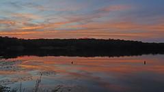 DSC02116 (gregnboutz) Tags: cloud beautifulclouds clouds cloudiness cloudylake colorfulclouds cloudy partlycloudy colorfulsunset fallsunset colorfulsunsets lakesunset lakesunsets orangesunset sunset sunsets binderlake binderpark binderstatepark gregboutz