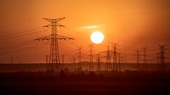 Steel forest / Bosque de acero (galayos) Tags: amanecer dawn electricidad de alta tensión puestadesol torredealtatensión cielo contraluz backlight backlit sunrise paisaje landscape sunset