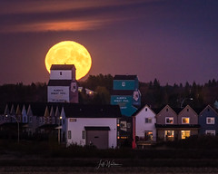 Harvest Moon 2017 - The Real One (WherezJeff) Tags: harvestmoon moon stalbert alberta fullmoon grainelevators canada october sky astronomy colorimage urban thanksgiving2017