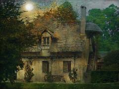 Une maison dans les bois (jeanfenechpictures) Tags: maison house bois wood forest forêt arbres trees versailles hameau hameaudelareine texture soleil sun jeanfenech