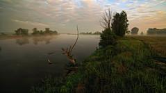 . (MarcelXYZ) Tags: marcelxyz cesarz drohiczyn landscape fog river