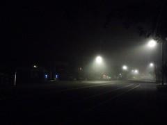 Road at night (El Alcalde de l'Antartida) Tags: street nocturnal dark lights lamps empty silence city shadows shapes darkness town arlington massachusetts boston desolate trees notte buio silenzio oscurita illuminazione ombre strada periferia lampioni cityscape