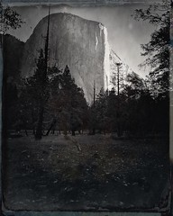 "El Capitan • <a style=""font-size:0.8em;"" href=""http://www.flickr.com/photos/7911500@N06/37026414994/"" target=""_blank"">View on Flickr</a>"