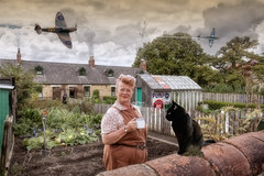 On The Home Front (brian_stoddart) Tags: people aircraft wartime cat bird garden flying vintage old historical