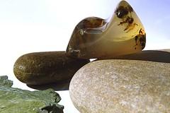 Macro Monday: Souvenirs (Hayseed52) Tags: macromondays souvenirs pebbles stones agate montana wyoming newyork memories