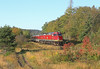 More colors than meets the eye (GLC 392) Tags: cn 104 105 emd f40ph2 f40phr canadian national heyden on ontario fall color lgbtq lesbian gay bisexual transgender plus passenger train agawa canyon algoma central trees leafs life first annual pride rainbow pine hills cowl