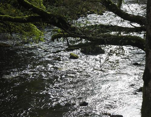 River Neath (Nedd Fechan), Glynneath