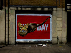 Is It Cat Art Day Already (Steve Taylor (Photography)) Tags: cat day moustache poster book art graffiti pasteup wheatup wheatpaste picture animal streetart black brown contrast red uk gb england greatbritain unitedkingdom london shadow