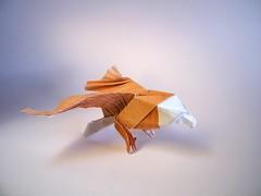 American Eagle - Jo Nakashima (Rui.Roda) Tags: origami papiroflexia papierfalten bird oiseau ave pájaro pássaro águia aguila aigle american eagle jo nakashima
