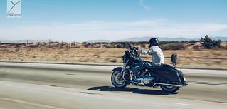 Roadtrip with Harley