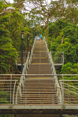 stairs (The Photo Smithy) Tags: qstation quarantinestation northhead stairs