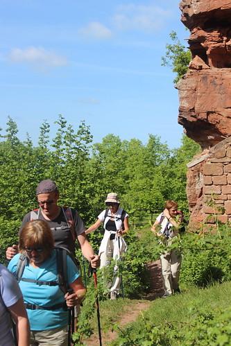 2015-05-10-09-47-11_Les Forts Trotters_à l'étang de Hanau