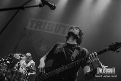 2017_10_27 Bosuil Battle of the tributebandsLIM_6390-Full Nelson  Limp Bizkit Tribute Johan Horst-WEB