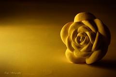 Aromatic... (Maria Godfrida) Tags: macromondays macro closeup sidelit aromatic aromatherapy chalkflower flower mm hmm 7dwf cof002dmnq cof002biz