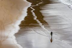 Reflective Senior Board Member (PIX SW) Tags: sea surfer pembrokeshire marloes surfing