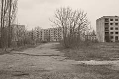 _MG_8276 (daniel.p.dezso) Tags: kiskunlacháza kiskunlacházi elhagyatott orosz szoviet laktanya abandoned russian soviet barrack urbex ruin military base militarybase