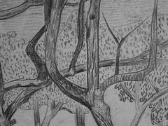 SERUSIER Paul - Le Verger (Louvre RF40965-Recto) - Detail 09 (L'art au présent) Tags: details détail détails detalles drawings dessins croquis étude study studies sketch sketches dessins19e 19thcenturydrawings dessinfrançais frenchdrawings peintresfrançais frenchpainters louvre paris france musée museum arbres tree trees trunk orchard grove nature