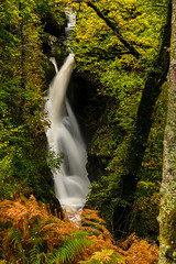 May the Force be With You (selvagedavid38) Tags: cumbria aira force lake district england ullswater water falls britain park ladscape green leaves national