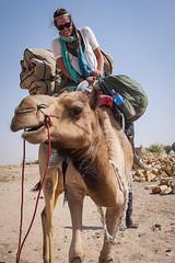 Rajasthan - Jaisalmer - Desert Safari with Camels-21