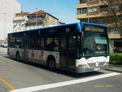 2149_STCP (antoniovera1) Tags: stcp porto