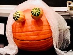 Rupert Pumpkin Demascus (Rupert Pumpkin) Tags: orange rupert pumpkin halloween fall autumn gourds eyes