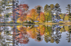 Autumn in New Hampshire (Pearce Levrais Photography) Tags: reflection hdr canon 7d markii autumn trees leaves foliage autumnleaves