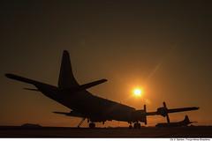 P-3 Orion (Força Aérea Brasileira - Página Oficial) Tags: 17gav 1gav7 2015 aeronave basc bascbaseaereadesantacruz baseaereadesantacruz brazilianairforce esquadraoorungan fab forcaaereabrasileira forçaaéreabrasileira fotoviniciussantos operacaoorunganitas orunganitas p3am silhueta aircraft exerciciooperacional operacao pordosol brasília df brazil bra