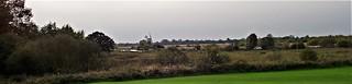 Turf Fen, Irstead, Norfolk